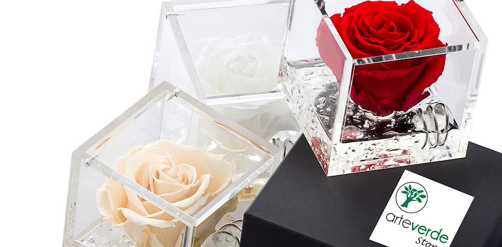 rose plexiglass profumate stabilizzate