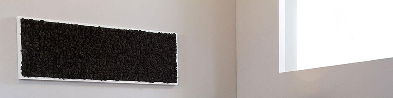 quadro in lichene
