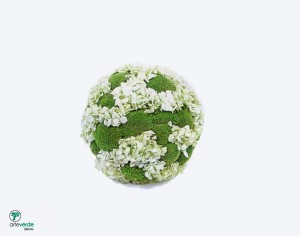 sfera polemoss Hortensia mintgreen
