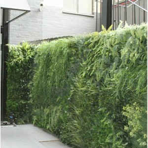 giardino verticale outdoor