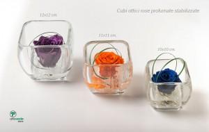 cubi ottici rose profumate stabilizzate