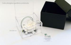 cubo plexiglass gardenia profumata stabilizzata