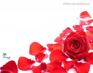 petali rose sfusi stabilizzati arteverde store