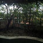 giardino pensile in rifacimento