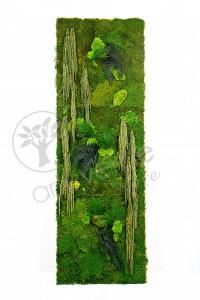 flatmoss, polemoss, amarantus green, felci e infine tree fern tiki.