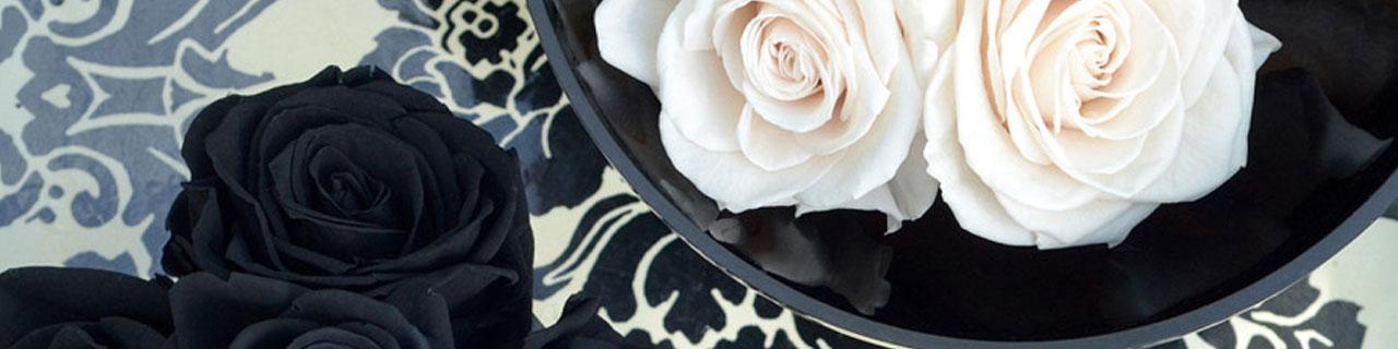 boccioli rose stabilizzate