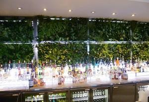 esempio giardino verticale per interno