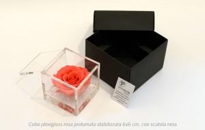 Cubo plexiglass rosa profumata stabilizzata 6x6 cm con scatola nera