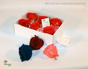 confezione boccioli rose