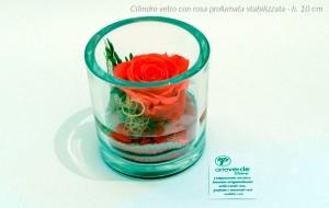 cilindro vetro rosa profumata stabilizzata h. 10 cm