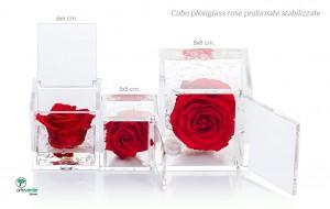cubo plexiglass rose profumate stabilizzate