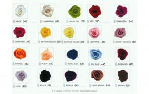 tavola colori rose disponibili