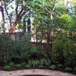 Ripristino giardino pensile