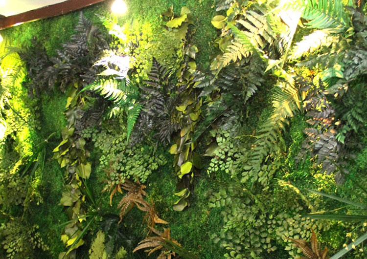 piante stabilizzate arteverde store senigallia
